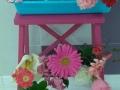 Primavera 27