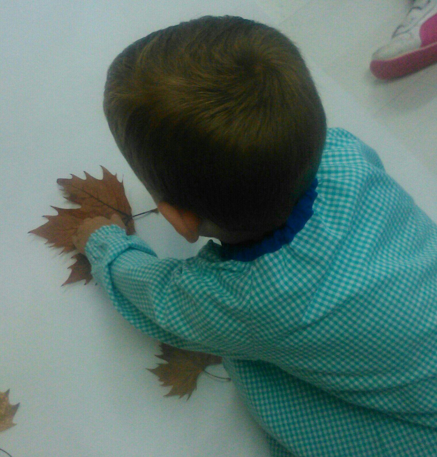 Fiesta Otoño MdA Trabajamos con hojas otoñales 01