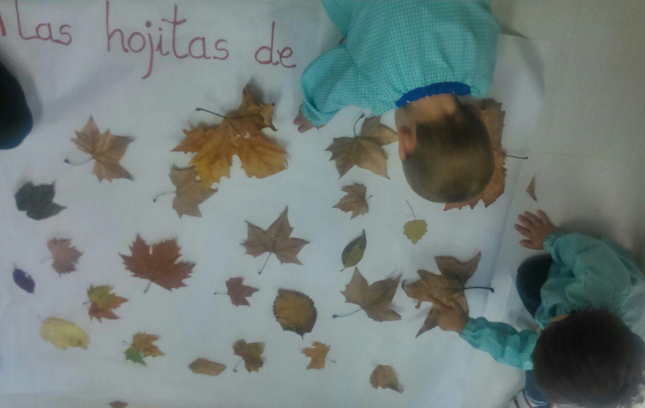 Fiesta Otoño MdA Trabajamos con hojas otoñales 04